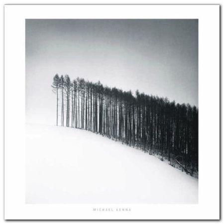 Forest Edge plakat obraz 70x70cm (1)