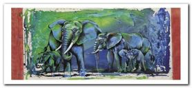 Wild Elephants plakat obraz 50x23cm