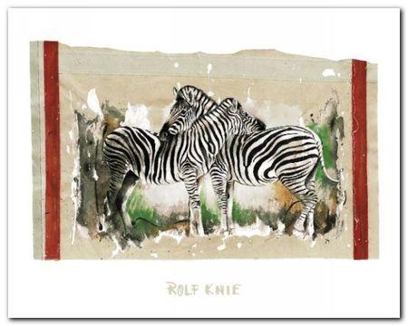 Two Zebras plakat obraz 50x40cm (1)