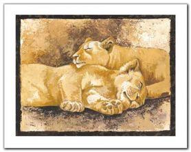 Sleeping Lions plakat obraz 50x40cm