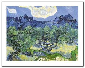 Les Oliviers plakat obraz 50x40cm