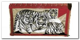 Tiger Trio plakat obraz 100x50cm