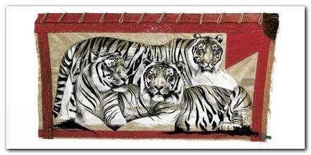 Tiger Trio plakat obraz 100x50cm (1)