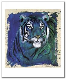 Eyes Of The Tiger plakat obraz 50x60cm