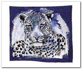 Young Leopard plakat obraz 60x50cm