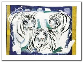 Three White Tigers plakat obraz 80x60cm