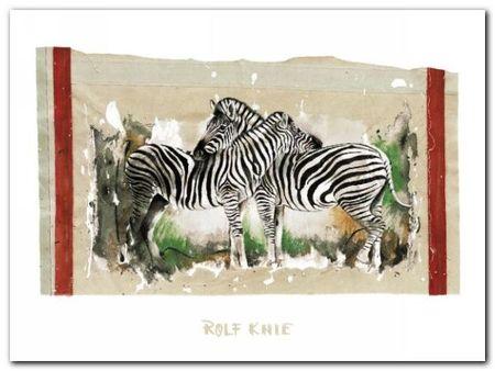 Two Zebras plakat obraz 80x60cm (1)