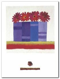 Four Gerbera plakat obraz 60x80cm