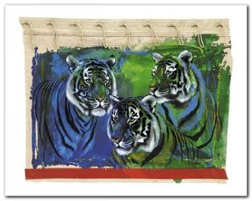 Three Tigers plakat obraz 30x24cm