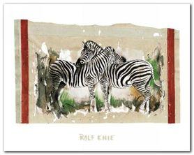 Two Zebras plakat obraz 30x24cm