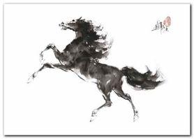 Running Horse I plakat obraz 70x50cm