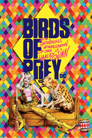 BIRDS OF PREY plakat 61x91cm