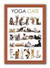 YOGA CATS plakat 61x91cm (3)